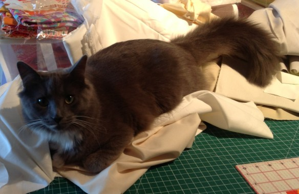 "Cosmo ""selecting"" fabric"