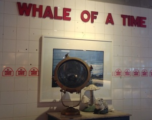 Whale time