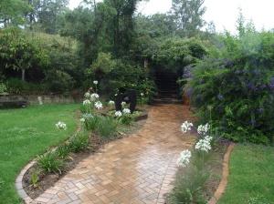 Jude's garden